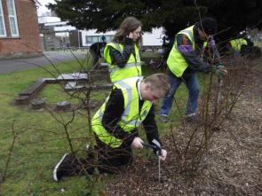 Baycroft School planting project