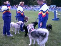 Stubbington Fayre        Dogs waiting to perform            AUGUST 2011 034