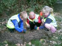 TrioCrofton Hammond Infants Planting Project 029